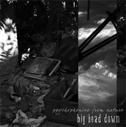 mf006 big head down - psychophonies from nature
